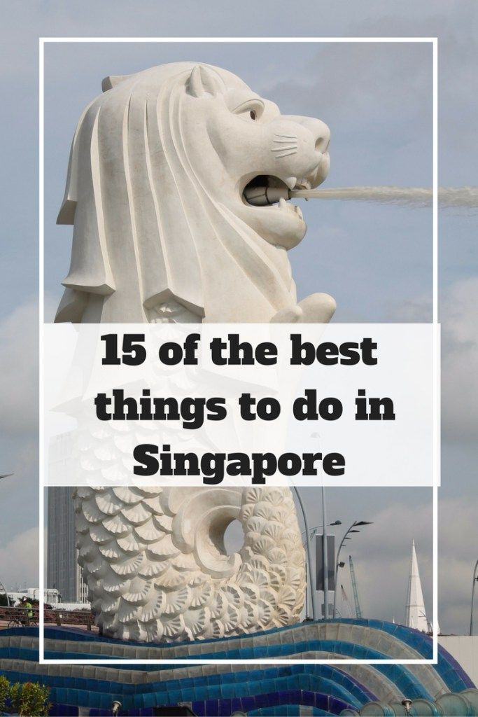 15 of the best things to do in Singapore   Ladies What Travel                                                                                                                                                                                 More