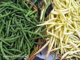 Ciorba de pui cu fasole galbena sau verde | Dieta Dukan