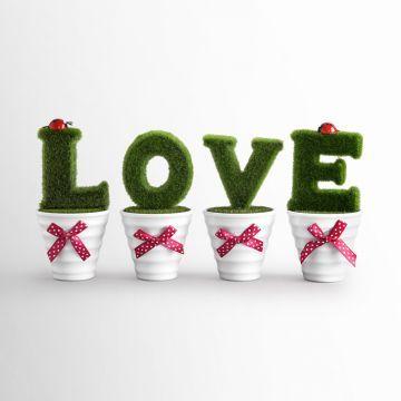 Best Deal! Get 'Urbane Artificial Grass Love Pot Gift Set 4 Pcs' at an unbelievable price.   #GOSF #discount #buy #flowerpot