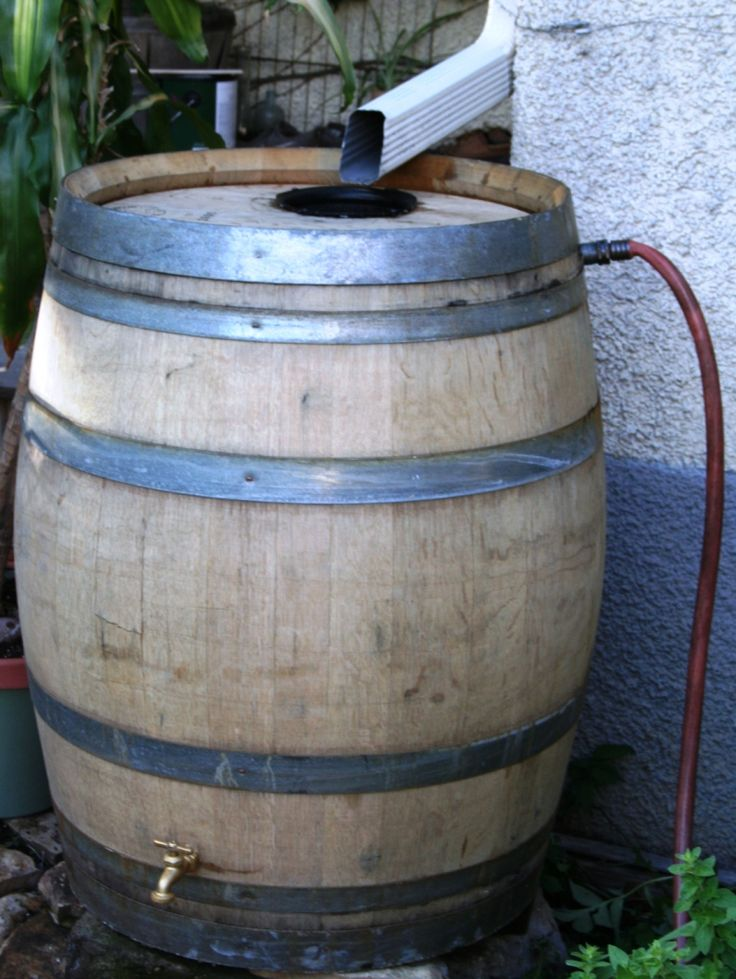 French Oak Rain Barrel with overflow hose... made from used 60-gallon French Oak wine barrels.