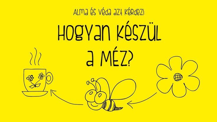 Alma és Véda: Hogyan készül a méz?
