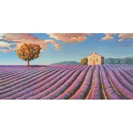 Posterazzi Campi di lavanda Canvas Art - Adriano Galasso (24 x 48)
