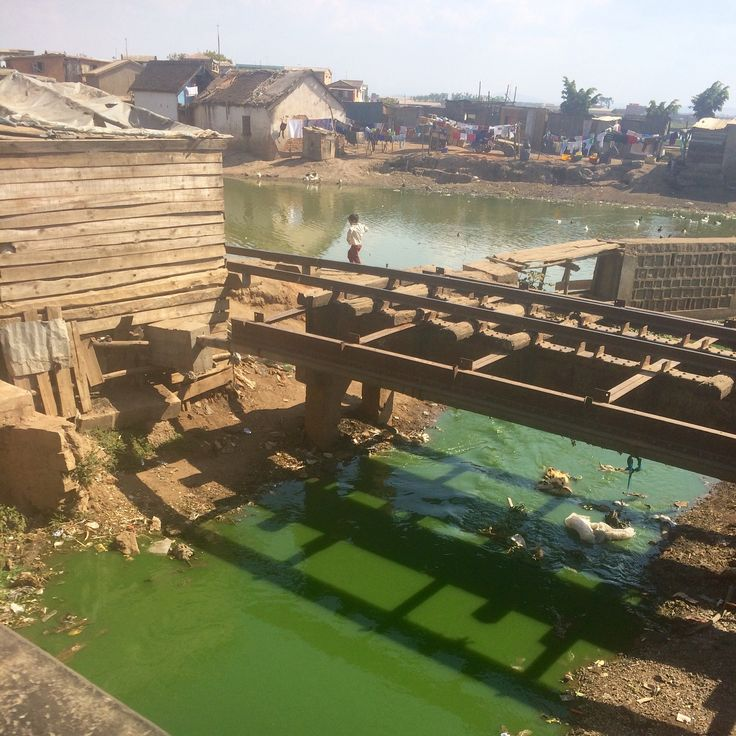Classic case of eutrophication in semi-industrial section of Antananarivo, Madagascar.  Wastewater and other nutrients turn the water fully green. Also no shortage of solid waste.