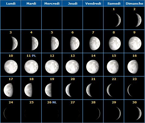 17 best ideas about calendrier lunaire on pinterest for Calendrier plantation jardin potager