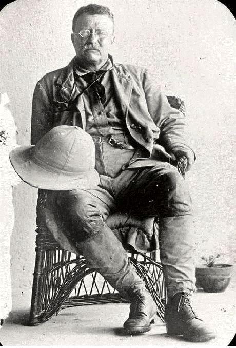 Theodore Roosevelt and Progressivism