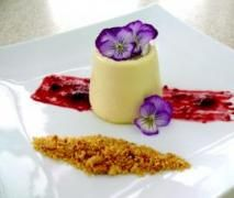 Thermomix Vanilla Panna Cotta with a Milk Crumb and Berries