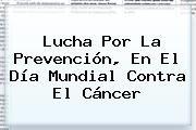 http://tecnoautos.com/wp-content/uploads/imagenes/tendencias/thumbs/lucha-por-la-prevencion-en-el-dia-mundial-contra-el-cancer.jpg Dia Mundial Contra El Cancer. Lucha por la prevención, en el Día Mundial contra el Cáncer, Enlaces, Imágenes, Videos y Tweets - http://tecnoautos.com/actualidad/dia-mundial-contra-el-cancer-lucha-por-la-prevencion-en-el-dia-mundial-contra-el-cancer/