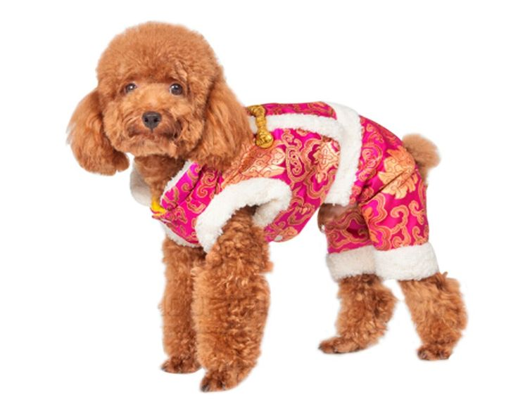 Pet's House Legs Fitted Pet Puppy Dog Clothes Fall and Winter Clothing Thickened New Year Teddy Bichon Pomeranian Coat (X-Large, Rose) >>> For more information, visit now : Dog Dresses