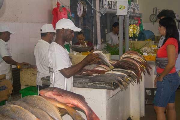Panama city 39 s fish market panama pinterest panama for City fish market