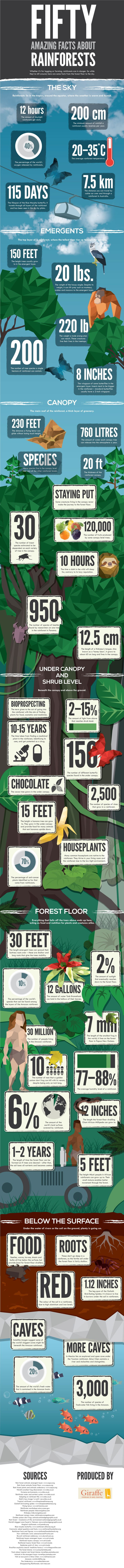 Protected: 50 Amazing Facts About The Rainforest - U.S. Green Technology