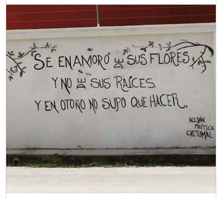 Acción Poética comenzó en la ciudad de Monterrey, Nuevo León, México; su fundador es el Poeta Armando Alanis Pulido. En un mundo donde las malas noticias ocupan los titulares, a veces sólo basta con solo voltear a las calles para encontrar una de sus frases. En esta colección encontrarás las ya célebres frases, reflexiones, pensamientos y poesías que adornan las calles de América Latina. La colección mas completa y curada de toda la web. Disfruta las imágenes del movimiento que ya da la…