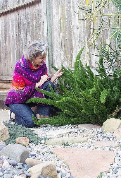 Best 25 ferns garden ideas on pinterest shade garden for Easy care garden ideas