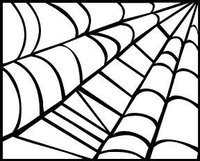 spider web box