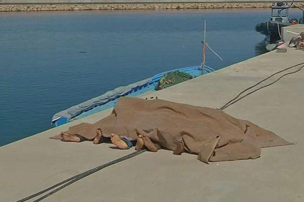 Artikel Knack, 16/09/2014 - Tien overlevenden na dramatische schipbreuk in Middellandse Zee