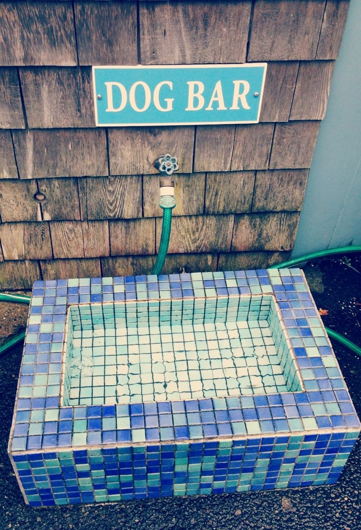 """Don't forget your furry friends when designing a beautiful backyard. We love this mosaic tile """"dog bar."""""""