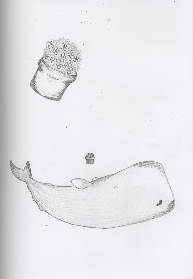 'The Hitchhiker's Guide To The Galaxy' Whale sketches