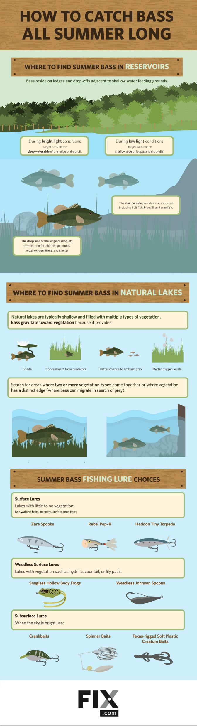 Bass are predictable and easy to target in the summer months. Comprehending their behavior and understanding how to target them are key to catching bass all season long.