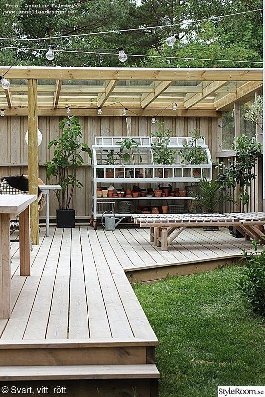 tak,grönt,trädgård,trädäck,uteplats