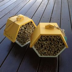 A home for Australian Native Bees.