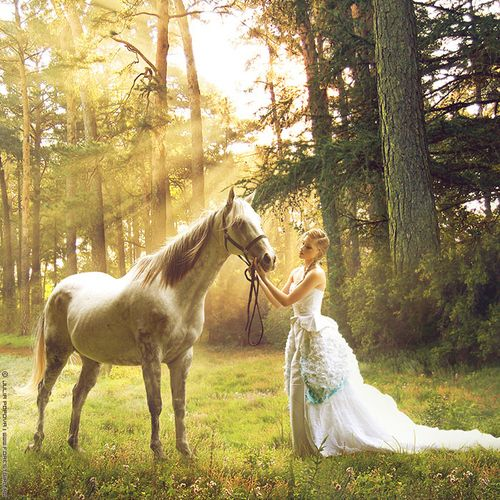 I'm getting pics with my horses in my wedding dress for a trash the dress session :)