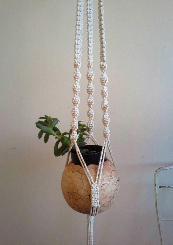 Macrame plant holder by FisherKing, Melbourne  https://www.etsy.com/au/listing/536025888/macrame-plant-pot-holder-mixed-sinnet