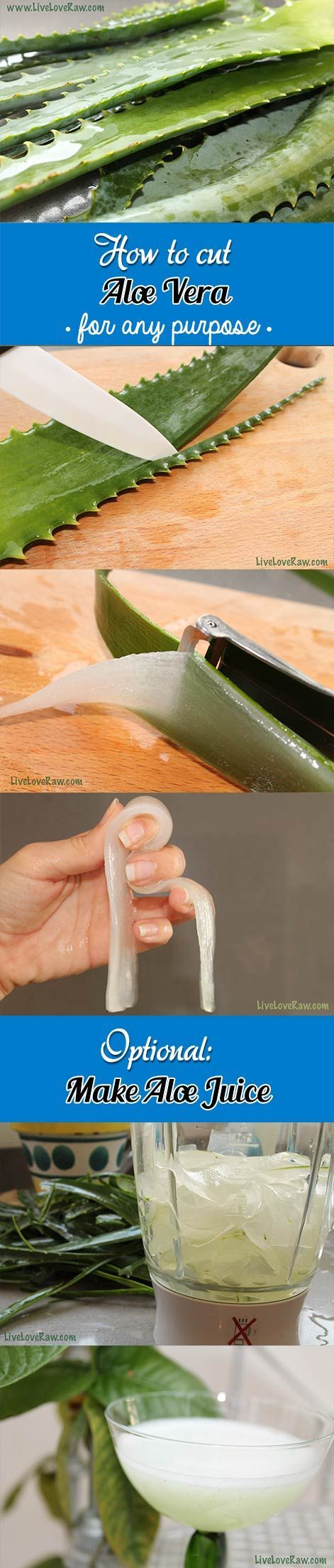 How to cut aloe vera by Live Love Raw: http://www.liveloveraw.com/what-to-do-with-aloe-vera/