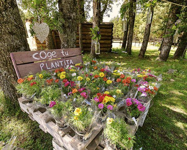 Regalos para invitados a bodas de verano #boda #detalles