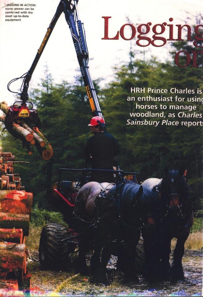 M&S Jumentum forest cart in UK. Manufactured and designed in Finland by Åfeltin Työhevoset (www.tyohevoset.fi) Horse logger in this picture Simon Lenihan http://celtichorselogging.com
