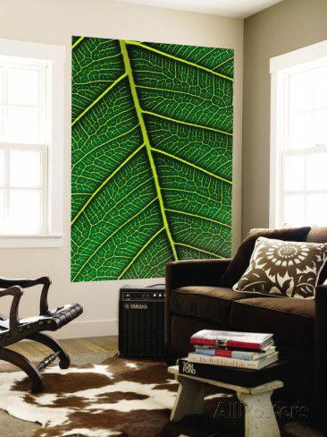 Peepal Leaf Wall Mural