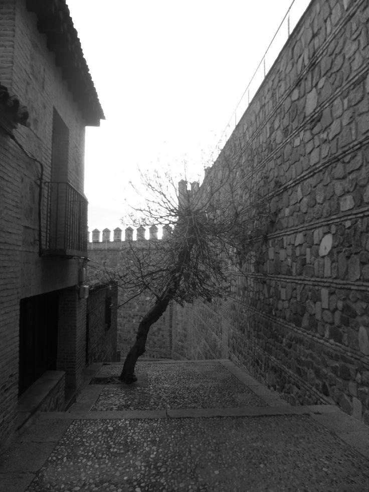 Ronda interior baja entre las dos puertas de Bisagra