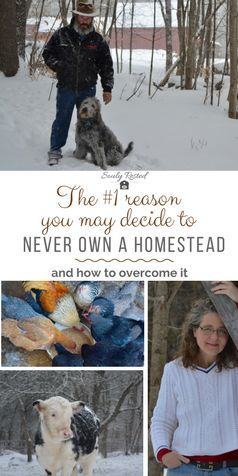 The hardest thing about #homesteading | One thing that makes homesteading very difficult | Winter on a homestead | back to basics living | living more simply