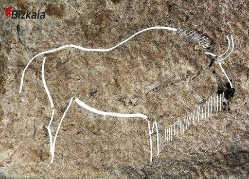 Cave art trove found in Spain 1,000 feet underground: This image released by the Diputacion Floral de Bizkaia on Friday May 27, 2016, shows a cave drawing. Spanish archaeologists say they have discovered an exceptional set of Paleolithic-era cave drawings that could rank among the best in a country that already boasts some of the world's most important cave art. Chief site archaeologist Diego Garate said Friday that an estimated 70 drawings were found on ledges 300 meters (1,000 feet)…
