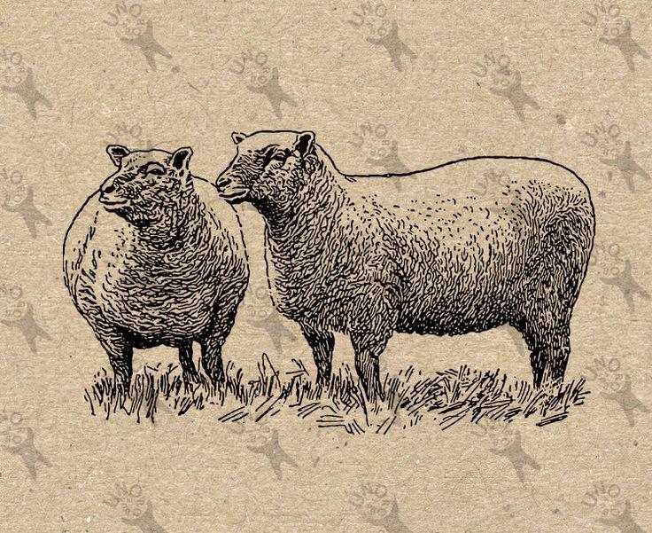 Flock of Sheep Lamb Farm Vintage image Instant Download Digital printable clipart graphic prints transfers tote towel kitchen art HQ300dpi by UnoPrint on Etsy #hq #png #bw #Ephemera #diy #old #book #illustration #gravure #inspiration #retro #antique #vintage #300dpi #craft #draw #drawing  #black #white #printable #crafts #transfer #decor #hand #digital #collage #scrapbooking #quality