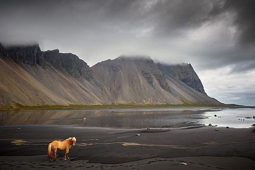 Genre: Landscape. 100 best photographers #35PHOTO 2016