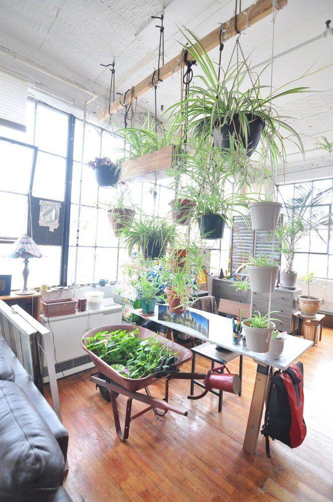Ein hängender Garten für Pflanzenliebhaber. Einfach eine Holzbalken mit Hilfe von Ketten oder Bändern an der Decke befestigen hängende Blumentopfe an den Balken hängen. Alternativ könnte man auch ein stabiles Metallrohr aus dem Baumarkt verwenden.