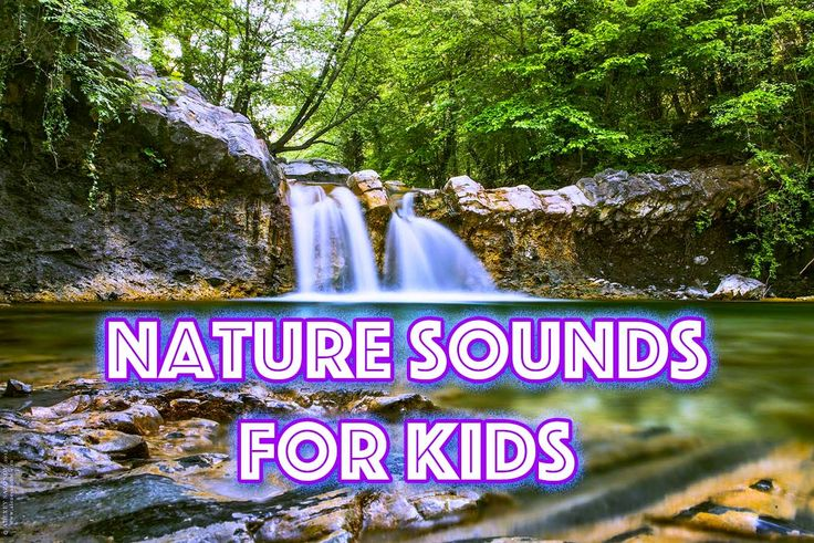 Water noise Sounds of the nature  Singing of birds