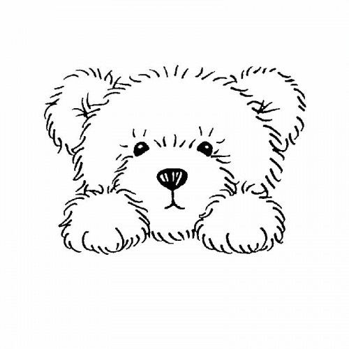 teddy bear face coloring pages - photo#24