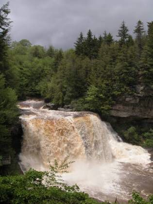 Blackwater Falls located in the Blackwater Falls State Park, near Davis, Tucker Co, WV