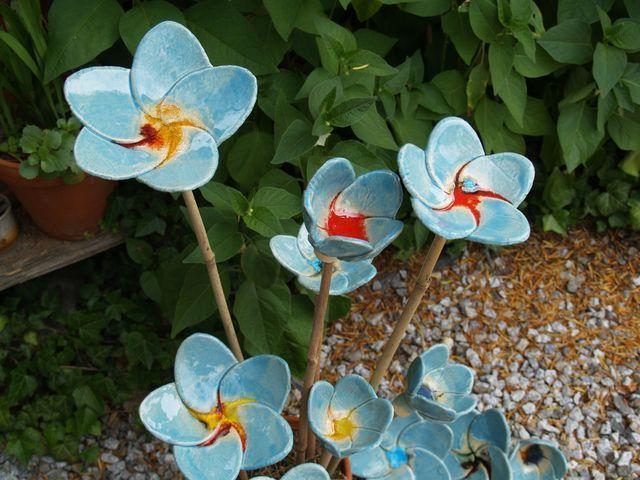 kvítí - flower for the garden