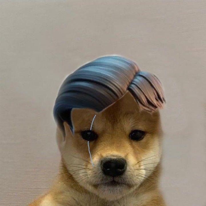 Midas Fortnite Dog Meme Dog Icon Dog Memes Animal Sketches