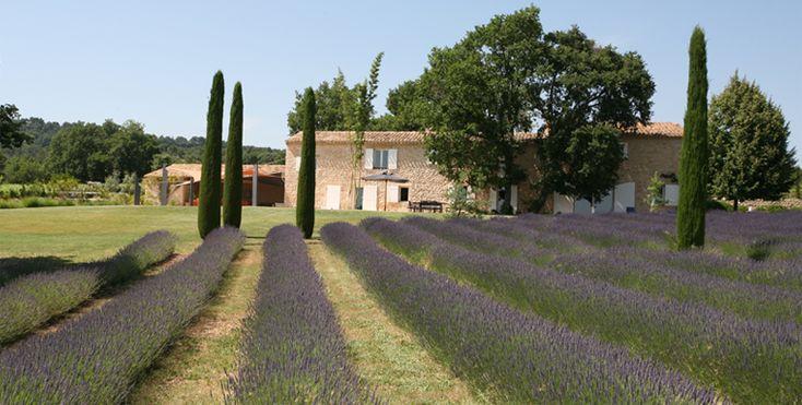 91 best mediterranean garden images on pinterest. Black Bedroom Furniture Sets. Home Design Ideas