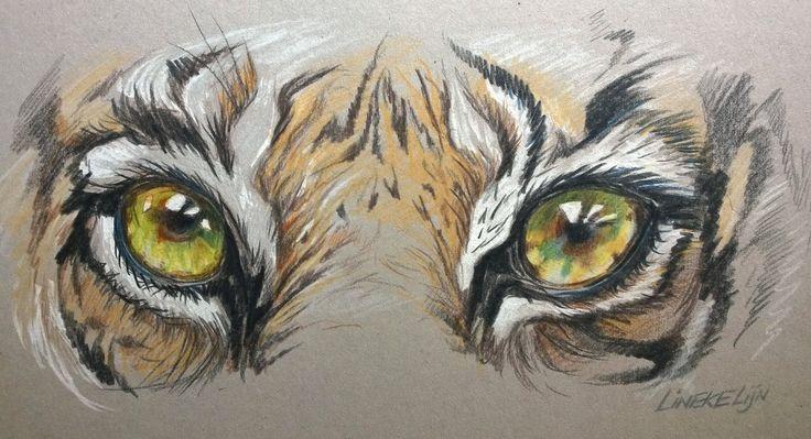 Hoe teken je Tijger Ogen / dieren tekenen / #42  dit gebruik ik als hoofdonderwerp.