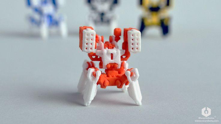 Boxer (orange white)