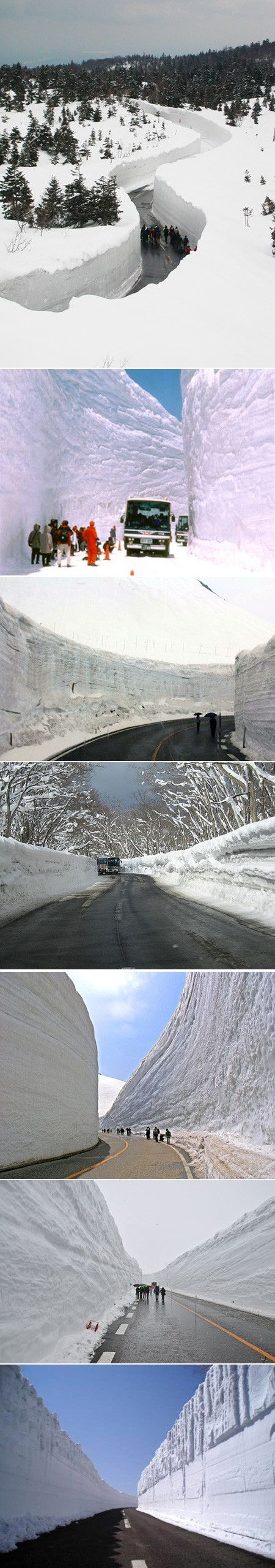 """The """"Snow Corridor"""" in Japan's Aomori Prefecture is one the popular tourist sights, with snow walls reaching a height of 9-meters (30-feet), allowing visitors to enjoy magnificent views of the vivid blue of the sky contrasted against the white of the snow in perfect harmony."""