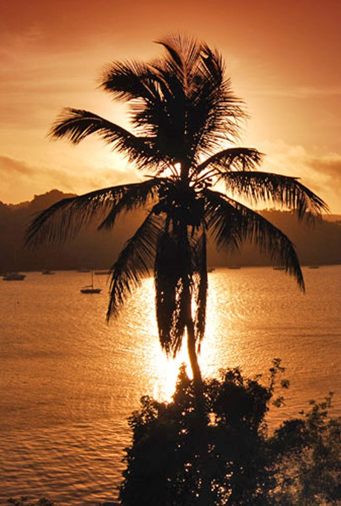 Enjoy the sunset in Dominican Republic