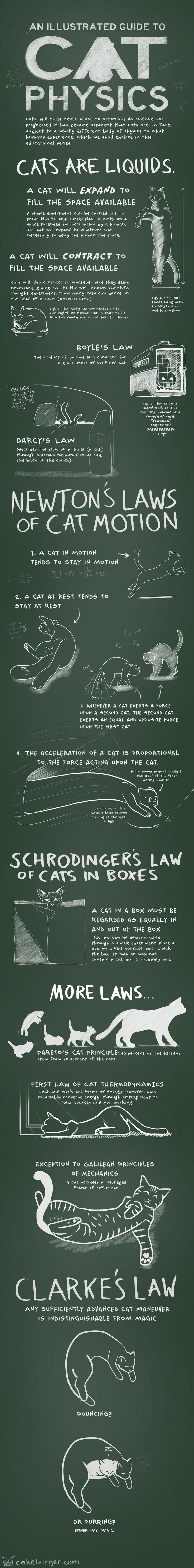 The Elegant Kitty-Verse : Illustrated Guide to Cat Physics brings new meaning to String Theory.