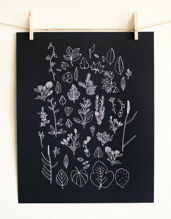This is a limited edition poster of Leahs Local Nature drawings inspired by little bits of nature collected from walks around her neighborhood. It was
