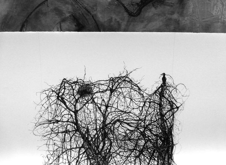 El Coloquio de los pájaros  dibujo a tinta s/ papel Zerkall 45 x 120