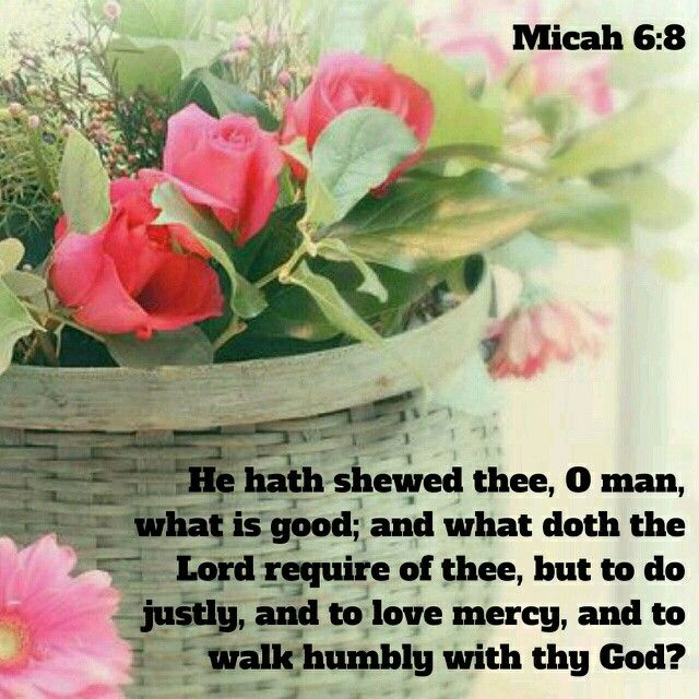 Micah 6:8 KJV