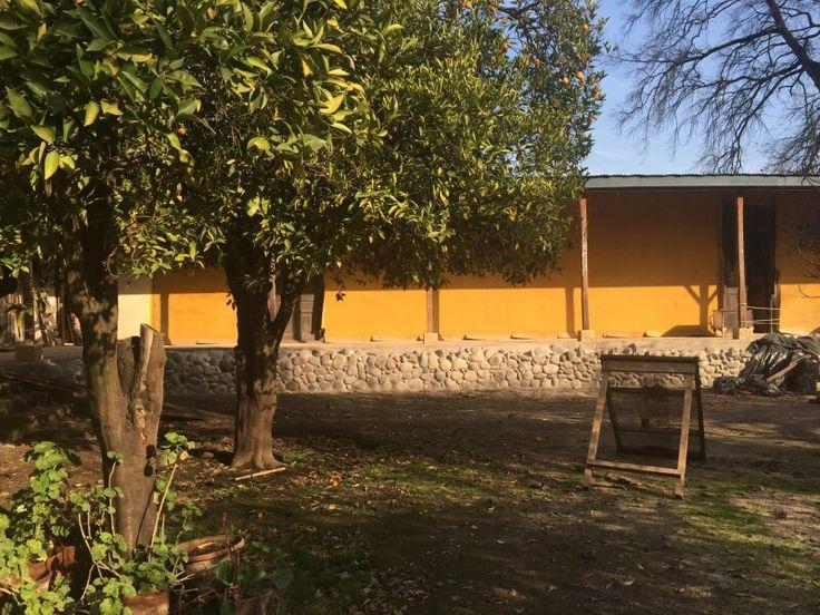 Sunset colors walls www.carlosmaillet.com